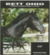Ruby sire stallion info Black pg 1.jpg