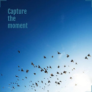 capture the moment.jpg