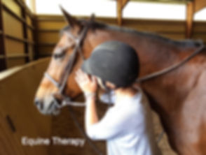 Equine%2520Therapy%2520and%2520sober%252