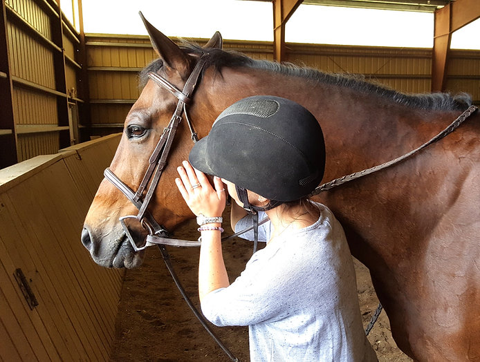 Experiential and other Equine Therapy