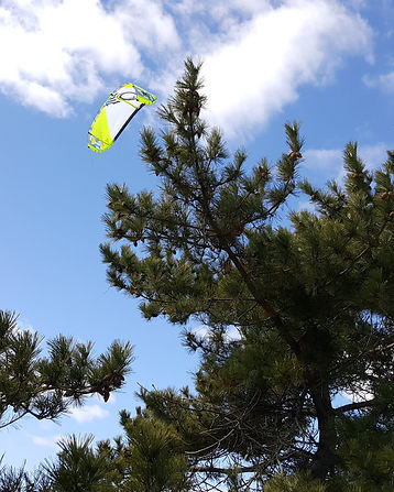 Kite on the beach.jpg