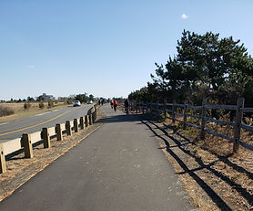 The Bicycle Path at Hammonasett.jpg