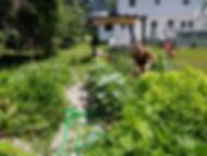 sober house garden