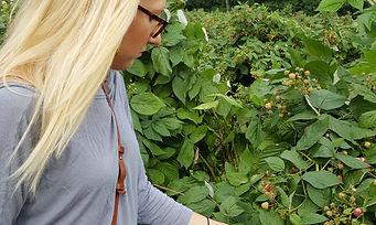 Sarah Picking Berries.jpg
