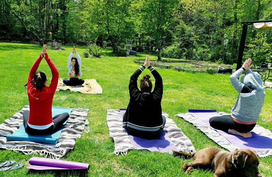 Yoga in the backyard.jpeg