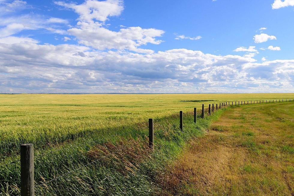 log-fence-prairie.jpg