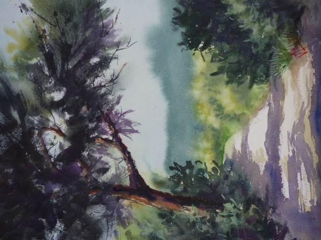Chemin du Combeau