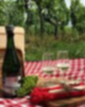 Picknick Borrel Den Bosch.PNG