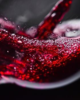 Wijnproeverij Den Bosch.PNG