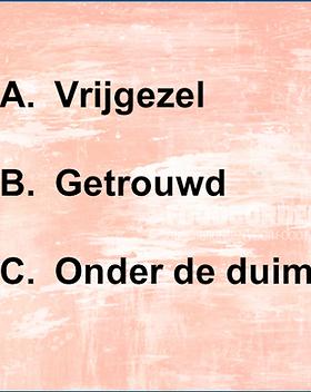 VrijgezellenQuiz Den Bosch.png