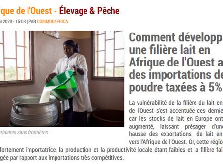 Le développement des filières lait locales en Afrique de l'Ouest