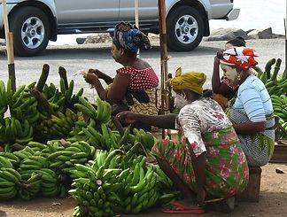 Filière vivriers-bananes-Mayotte