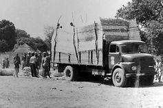 Production Coton Guinée-Chargement coton graine sur marché coton-Gaoual
