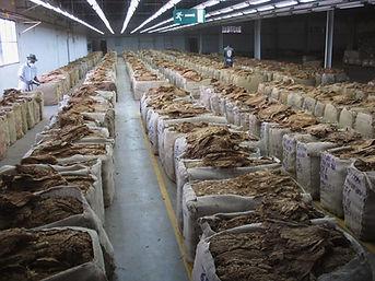 Filière tabac Madagascar-réagréage tabacs