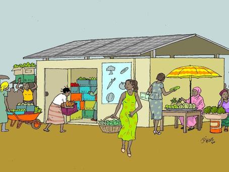 Ces frigos solaires partagés évitent un gaspillage massif sur les marchés nigérians  - Heidi.news