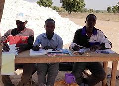 marché coton autogéré-équipe d'achat paysanne