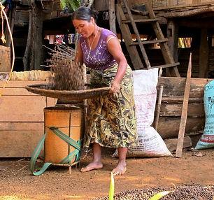 Vanage café-Sud-Ban_KopPhanTai-Bolaven-Laos