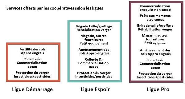 Transparence cacao-evolution des services rendus par ls coopératives cacao