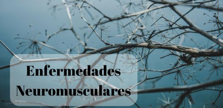 enfermedades-neuromusculares.jpg