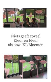XL bloemen