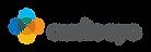 audioeye-logo-final-RGB-72dpi-large.webp