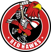 Red Hawk 2 PNG Transparent (1).png