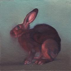 Red Rabbit 4