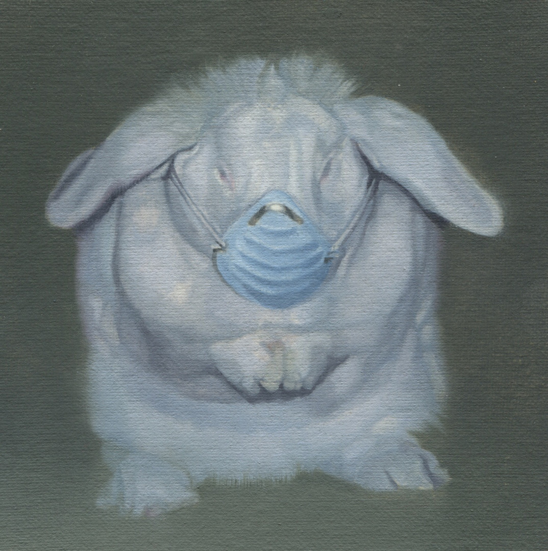 White Rabbit with Blue Mask 4