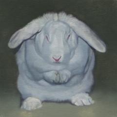 White Rabbit 43