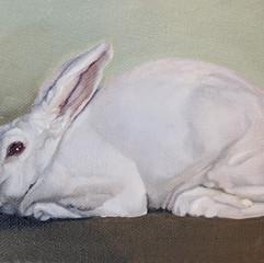 White Rabbit 3