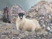 Sheep in Ruble