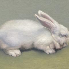 White Rabbit 2