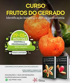 Curso Frutos do Cerrado.jpg