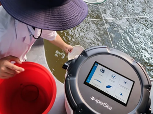 A practical guide to using AI in aquaculture