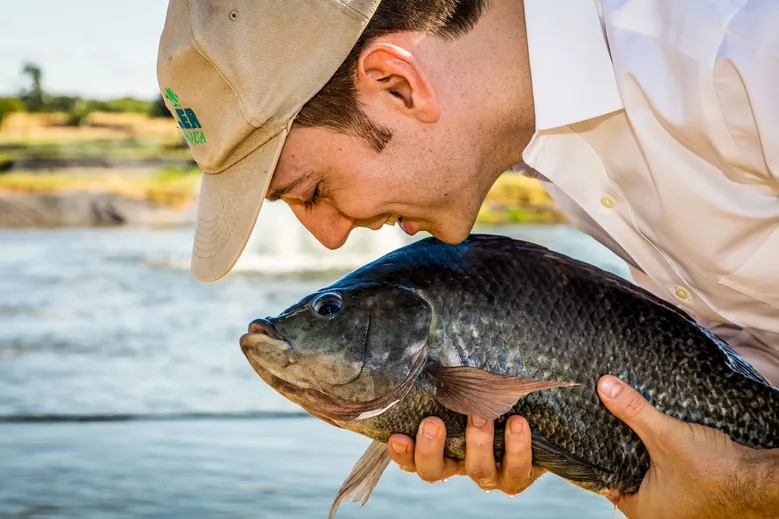 The future of tilapia aquaculture: an insider's perspective