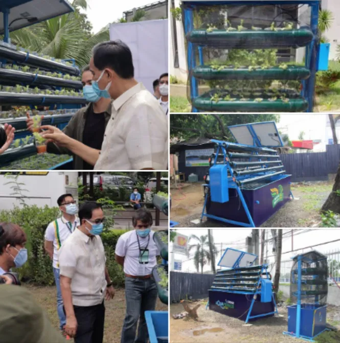 Why urban aquaponics could help the Philippines weather Covid-19