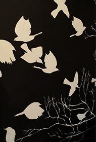 graphite birds