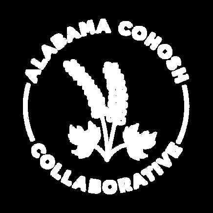ACC Logo-01.png