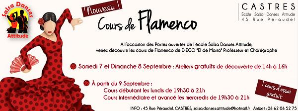 Flamenco affiche.png