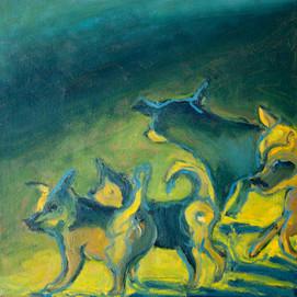 Jane Giblin_Venetian Street Dogs, oil on canvas, 30cm x 30cm, 2020