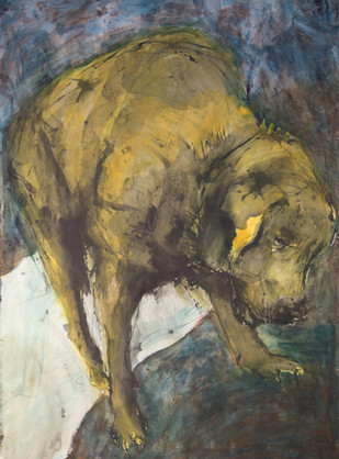 Jane Giblin, The Confused Russell, 150cm