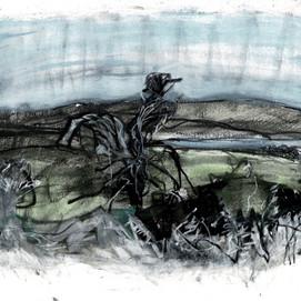 Furneaux Tree possibility, pastel and watercolour on unicartridge, 28cm x 42cm, 2020