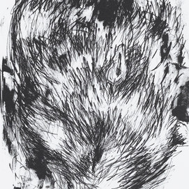 JaneGiblin_The Wombat on the Road, framed lithograph, 38cm x 26.5cm, 2018