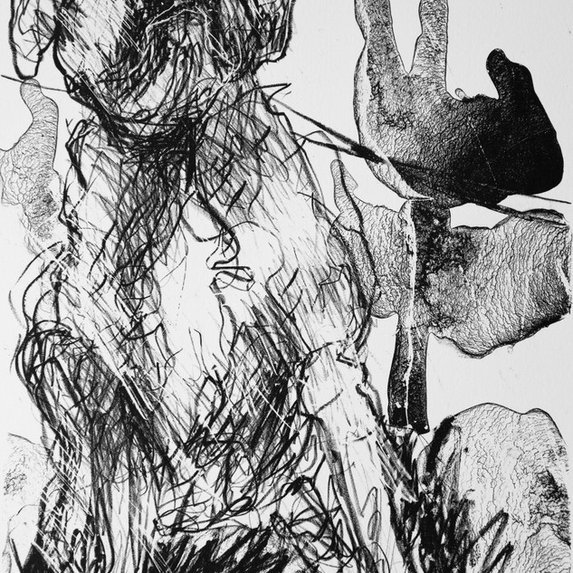 Jane Giblin_The Anxious Boxer of Salamanca Place, lithograph, 34cm x 24cm, 2020