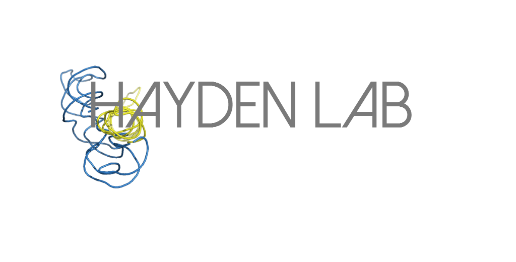 Hayden Lab logo