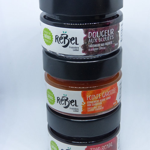 Trilogie de pots 106 ml REBEL