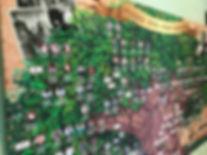 родословная схема; генеалогическое древо; древо семьи; родословная книга; родовая книга; летопись семьи
