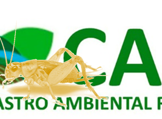 GRILAGEM E CADASTRO AMBIENTAL RURAL