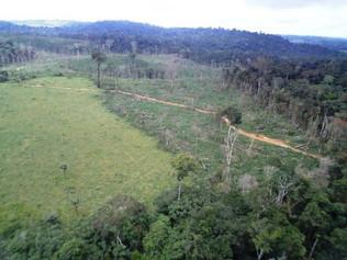 Cadastro rural tem mais de 11 mil declarações de propriedade em terras indígenas