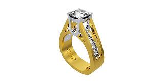 ER24_V1 - Tema Jewelry